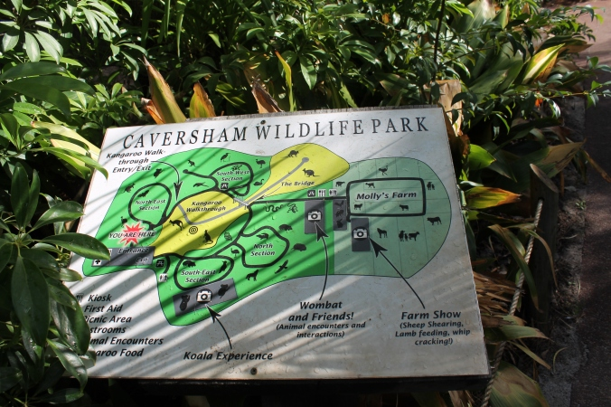 Park map. The park is nicely shaded with big trees, tak terik kena matahari. Nice!