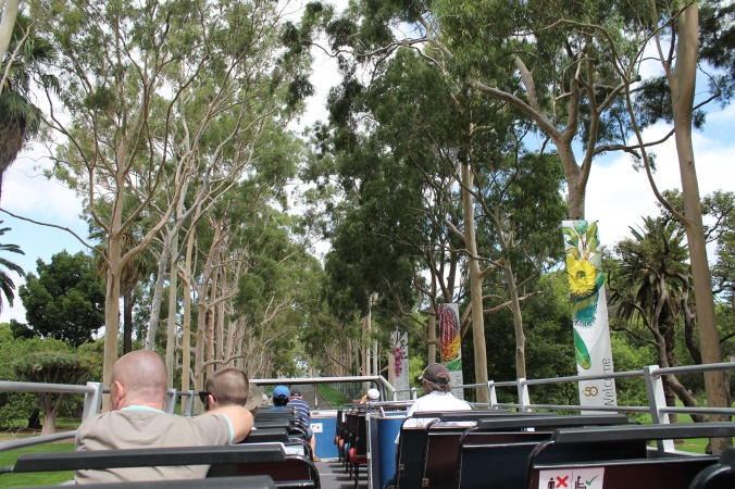 On the way to Kings Park via the main entrance to the Botanic Garden